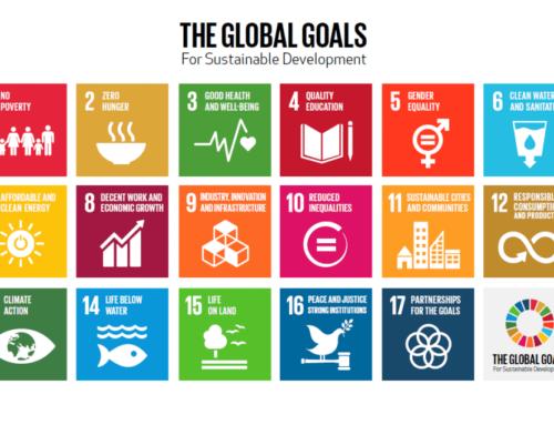 UN report on child rights & SDGs includes children's views
