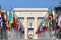 UN Entry Points