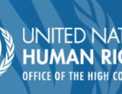 📣 Call for contributions for the UN Treaty Body review process
