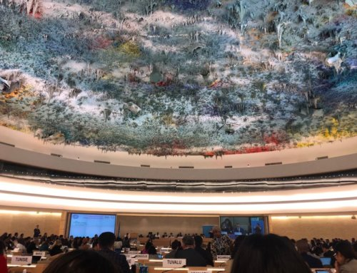 The Human Rights Council celebrates the 30th anniversary of the Convention on the Rights of the Child with a High-Level Panel on children's rights mainstreaming within the UN