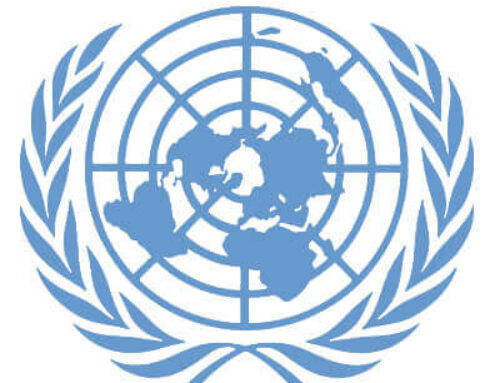 Joint NGO response on strengthening the UN human rights treaty body system