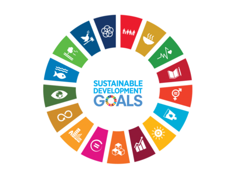 Empowering children to contribute to UN processes on SDGs!
